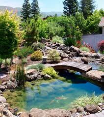 backyard fish pond designs raised pond design ideas raised pond