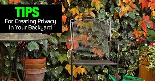 privacy screen ideas tips for creating privacy in your backyard