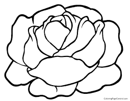 lettuce 01 coloring page coloring page central
