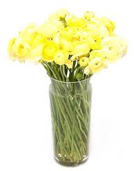 weekly flower delivery weekly flower delivery ranunculus yellow