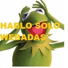 Memes Rana Rene - memes de rana rene memesderanarene twitter