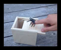 amazon com hilarious scare box spider prank wooden scarebox