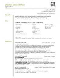 Graphical Resume Graphic And Web Designer Resume Free Resume Example And Writing