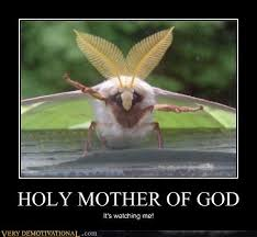 Holy Mother Of God Meme - memebase mother of god all your memes are belong to us funny