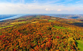 Foliage Map See The Best Fall Foliage From This Sky High Gondola Travel