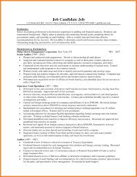 Auditor Resume Sample by Senior Auditor Resume Sample Free Resume Example And Writing