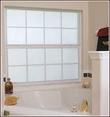 bathroom window privacy ideas bathroom amazing best 25 window privacy ideas on frosted