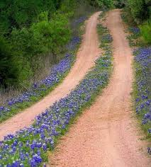 Texas traveled definition images Texas backroad it this just so pretty love taking the road jpg