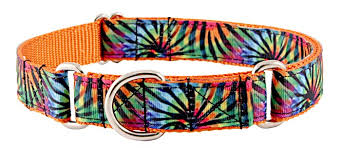 striped grosgrain ribbon buy tie dye stripes grosgrain ribbon martingale dog collar online