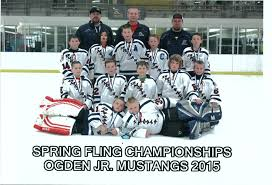 junior mustangs jr mustangs 10u travel