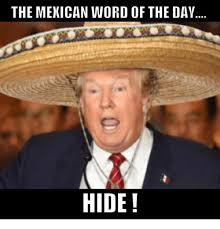 Word Meme - the mexican word of the day hide meme on me me