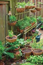 Vegetable Garden In Pots by Container Gardening Made Easy