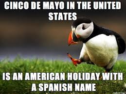 Cinco De Mayo Meme - let s quit the articles about cinco de mayo being celebrated wrong
