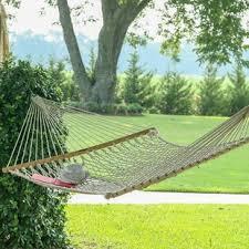 tree swing wayfair