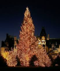 christmas lights in asheville nc 501 best christmas lights images on pinterest merry christmas