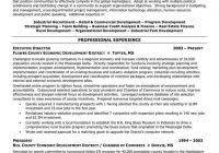 Non Profit Resume Samples Executive Summary Resume Example Examples Personal Senior Sales