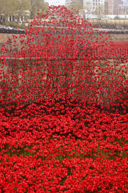 best 25 remembrance day pictures ideas on pinterest remembrance