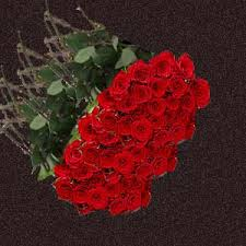 roses wholesale allways4you roses wholesale in bulk russian cut big heads