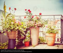 blumentã pfe fã r balkon baigy terrasse dekor hauteur