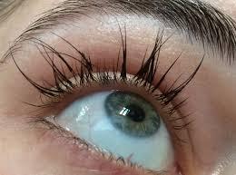 Eyelash Extensions Natural Look Fullsizerender 282 29 Jpg