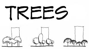 trees for architecture sketches architecture daily sketches
