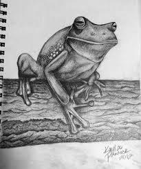 animals sketchbook