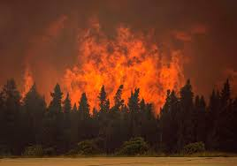 Wildfire Fighting Canada by Visibility Improves Aiding Aerial Effort To Quell Hundres Of