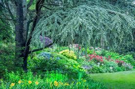 garden photography landscape architecture photography landscape