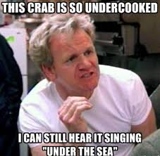 Best Memes 2013 - the best chef ramsay memes that capture his endless talent for insults