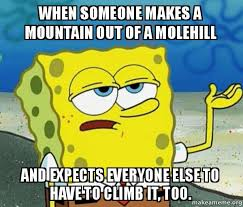 How To Make A Meme Out Of A Picture - when someone makes a mountain out of a molehill and expects everyone