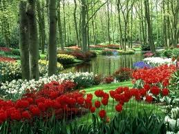beautiful flower garden pictures plan beautiful gardens hd