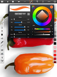 sketchbook pro for ipad review educational app store