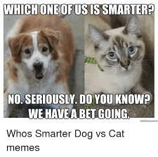 Dog And Cat Memes - 25 best memes about dog vs cat dog vs cat memes