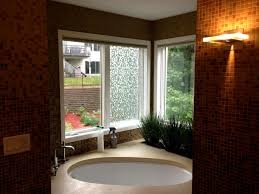 bathroom window ideas for privacy luxuriant bathroom windows ideas lovely bathroom windows
