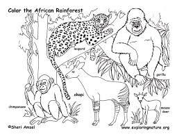 cute coloring pages baby african animals printable printable