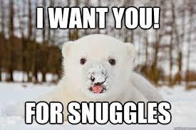 Snuggle Bear Meme - i want you for snuggles polar bear junkie quickmeme
