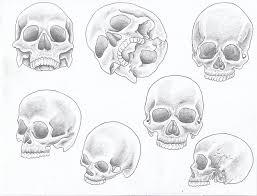 shaded skulls by theannastazia on deviantart