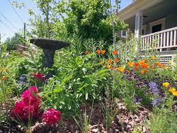 greatest gardens backyard habitats