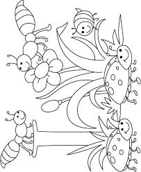 insect coloring kids download free insect