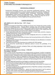 professional summary resume examples best sales associate resume