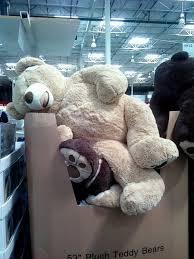 target black friday sales giant teddy bear 25 best costco bear images on pinterest costco stuffed animals
