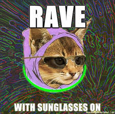 Hipster Kitty Meme - image 62548 hipster kitty know your meme