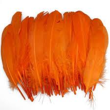 Orange Home Decor Amazon Com 50pcs Home Decor Orange Duck Feather Everything Else