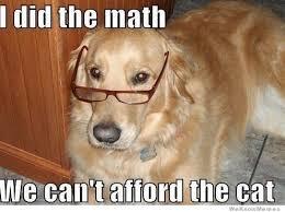 Hilarious Dog Memes - 20 hilarious dog memes