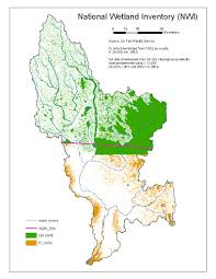 Florida Wetlands Map by Base Layers And Information Ongoing Effort To Catalog Data In The