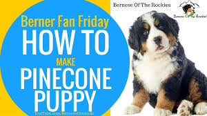 diy pine cone puppy crafts for kids how to bernese of the
