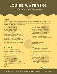 Resume Sample For Freshers Student Perfect Entry Level Resume Examples Resume Examples 2017