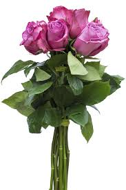 purple roses for sale buy purple cezanne lavender flowers for sale online flower