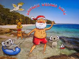 Australian Christmas Christmas Pictures Backyard Galah Cam