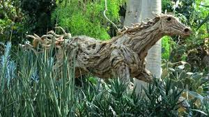 wood sculpture singapore driftwood sculpture in flower dome picture of gardens by the